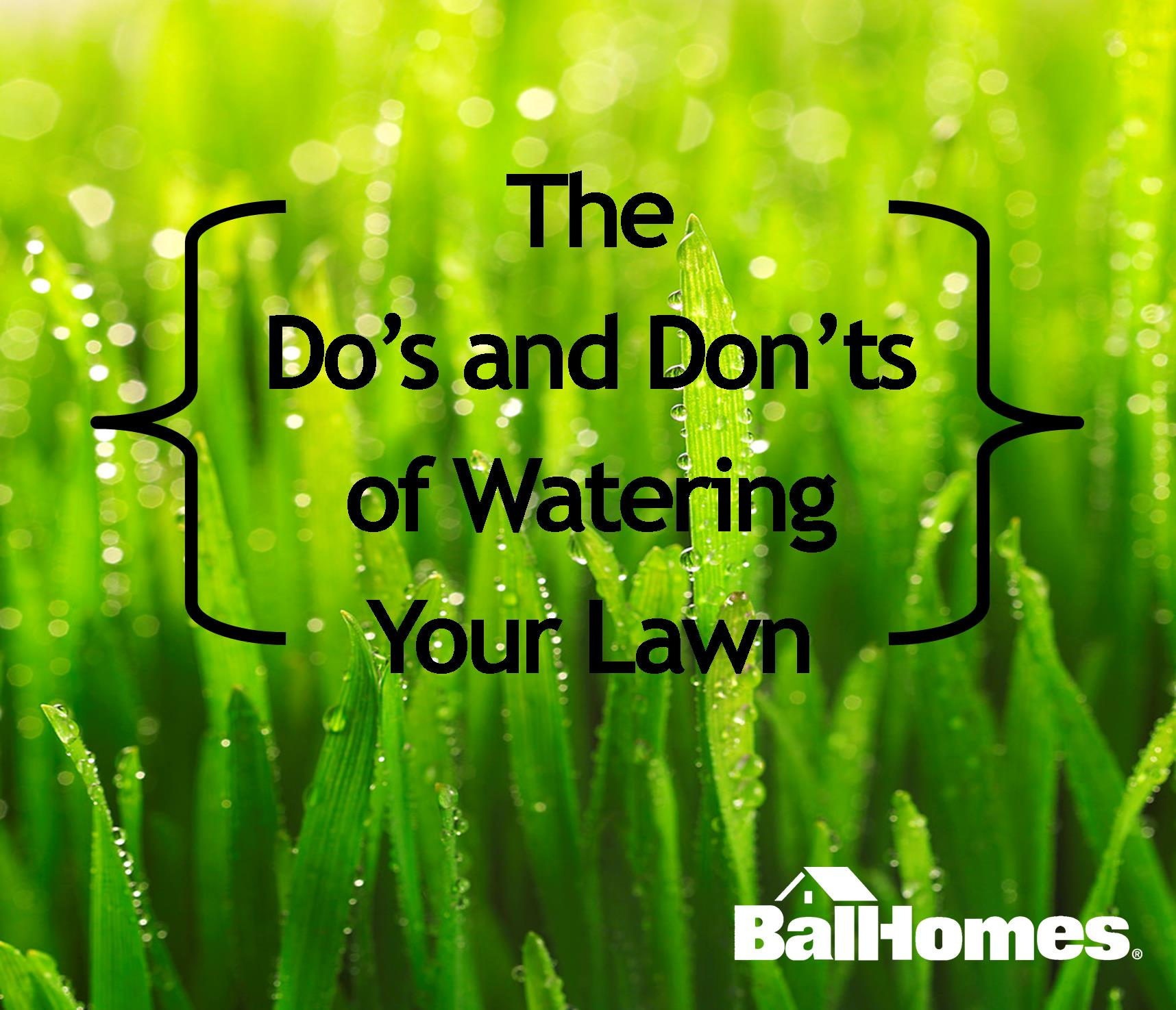 Watering Your Lawn The Do 39 S And Don 39 Ts