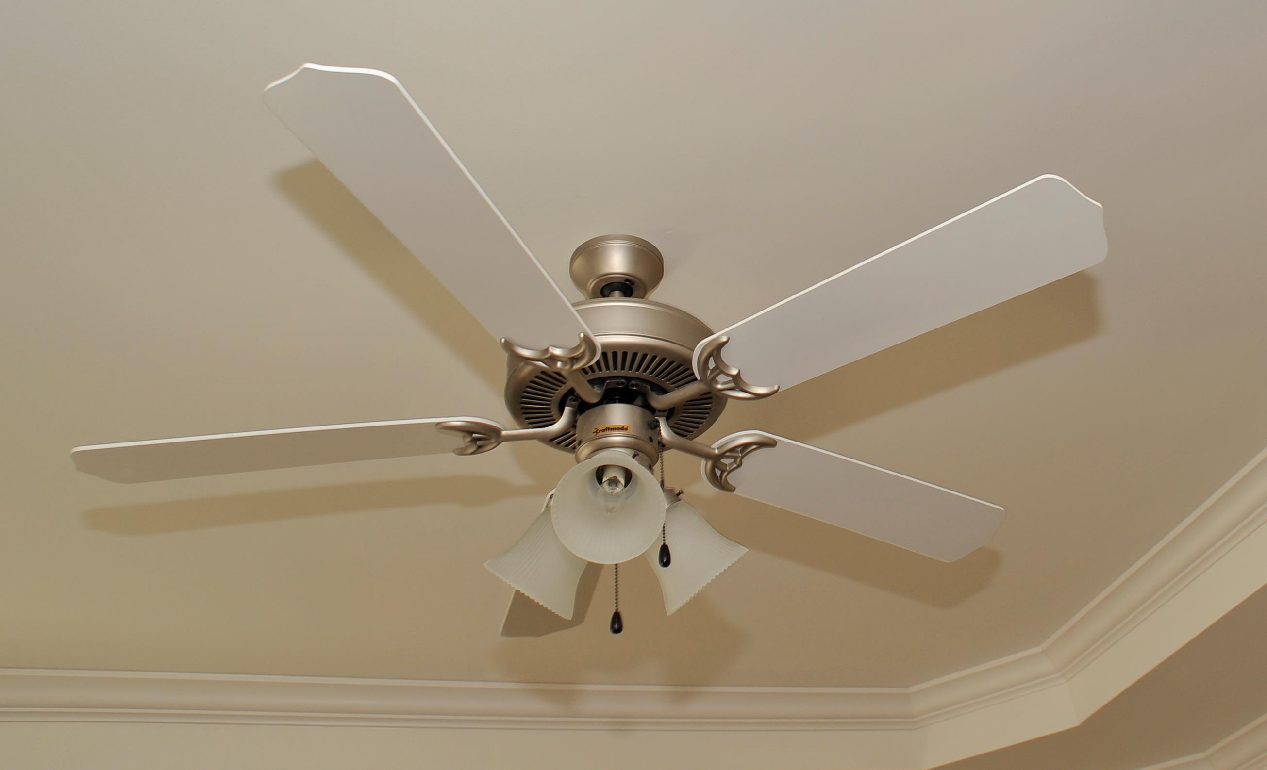 lovely home depot ceiling fans florida insured by ross. Black Bedroom Furniture Sets. Home Design Ideas